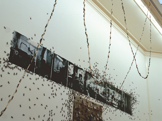 Construction of a Place and Ants, 1998<br/>Mixed media