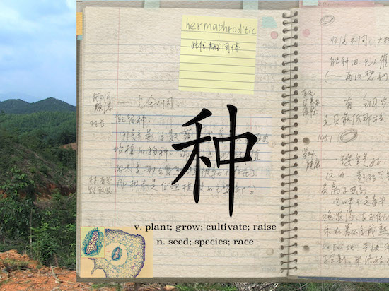 "Keywords Laboratory: Social Botany, about ""seeds, bloodline and anxiety about filial piety"" and about ""endurance and animalistic freedom"",<br/>2012–2015"